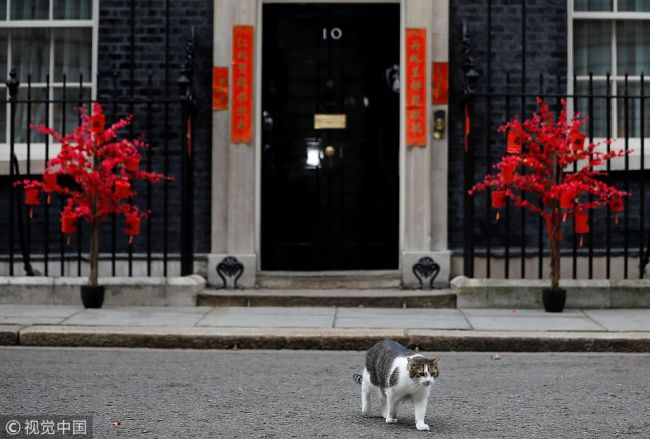 Downing Street decorated for Chinese New Year celebration ...
