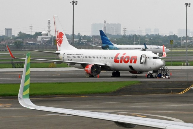 Lion Air and Garuda Indonesia planes at the Sukarno-Hatta International Airport in Tangerang, on the outskirts of Jakarta, November 27, 2018. [Photo: AFP/Adek Berry]