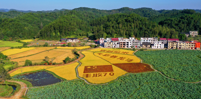 Farmers' Harvest Festival was held in Xiafang village, Yongfeng county, southeast China's Jiangxi province, on Sept 21, 2019.[Photo: VCG]