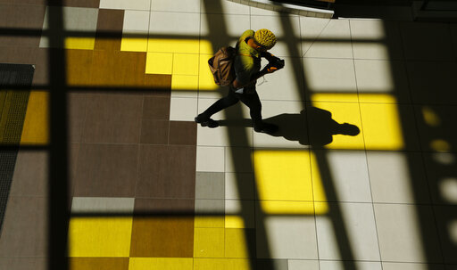A shopper walks at the Rosebank Mall shopping Centre in Johannesburg Sunday, Nov. 3, 2019.[Photo: AP]